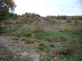 Wohngrundstück in Vodnjan (Dignano)