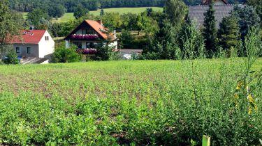 Wohngrundstück in Kreischa  - Gombsen