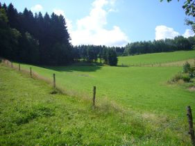 Doppelhaushälfte in Attendorn  - Wamge