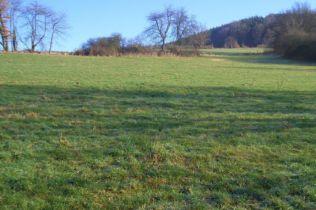 Wohngrundstück in Erbach  - Bullau