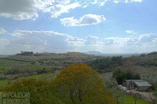 Villa in Torri in Sabina