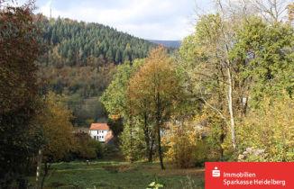 Wohngrundstück in Neckargemünd  - Neckargemünd