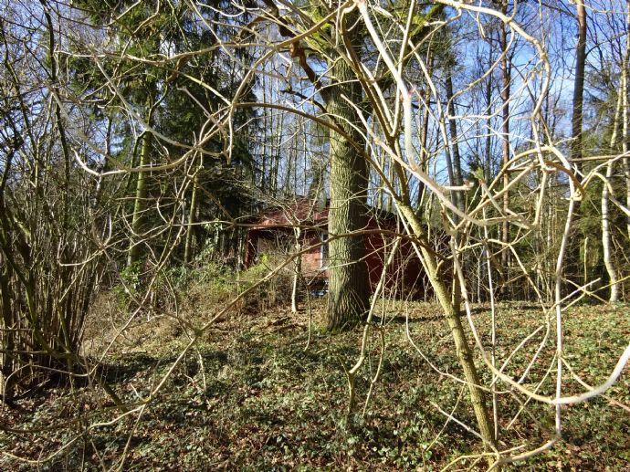Waldgrundstück waldgrundstück in unverbaubarer südlage ai 5147