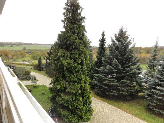 Kleinpestitz! - Schöne Singlewohnung mit großem Balkon und Blick ins Grüne!