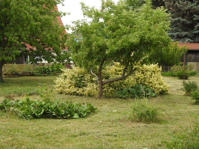 Tolles Grundstück - großer Garten - Doppelhaushälfte 160 m² Wfl. .
