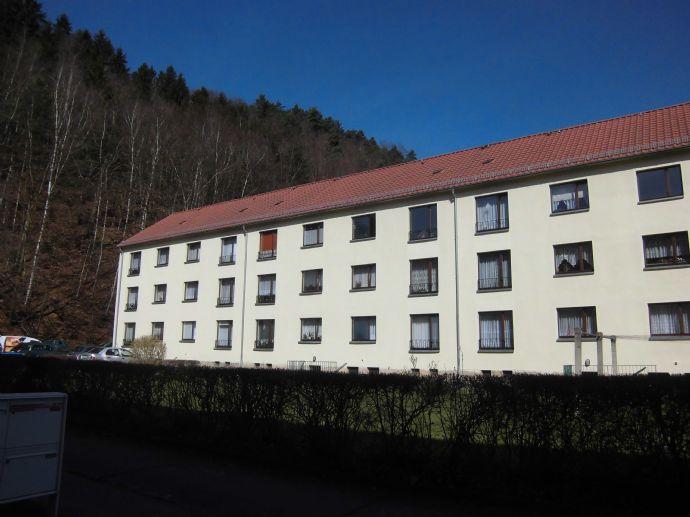 Vermietung - Forstweg 10 (WE5) - 3-Raum-Wohnung
