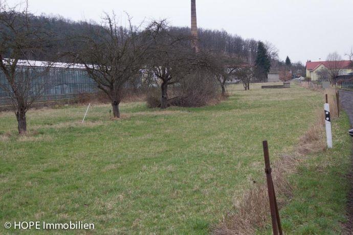Großes Grundstück an der Sächsischen Weinstraße