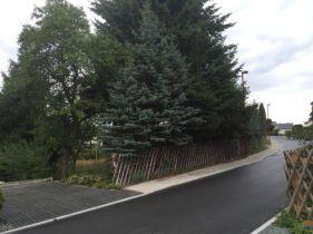 Wohngrundstück in Auerbach  - Auerbach