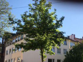 Wohn- und Geschäftshaus in Bremen  - Fesenfeld