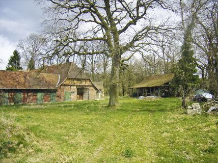 Für Mutige: Großer Resthof im alten Zustand, mit Stall und Scheune auf...