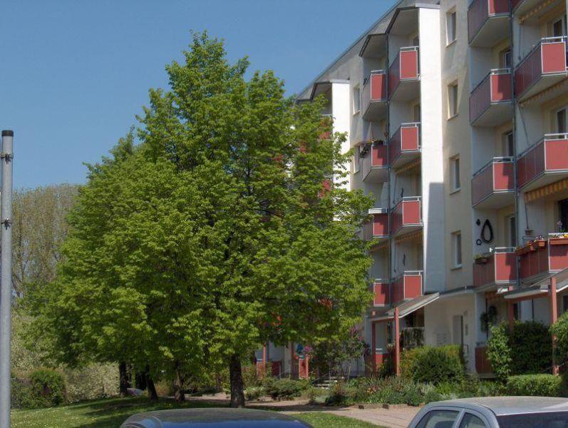 Gefunden! Teilmodernisierte Wohnung