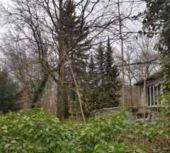 Großes Baugrundstück mit Abrisshaus und schönem Baumbestand in 13465...