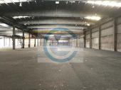 3000 m² Kalthalle - teilbar ab 1.000 m² !!!