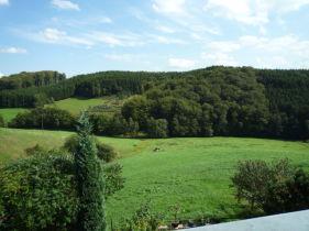 Erdgeschosswohnung in Odenthal  - Scheuren