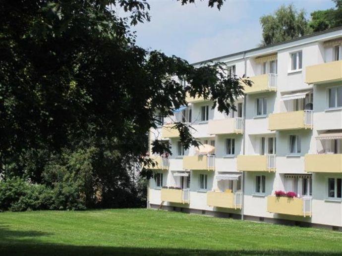 Frisch sanierte und renovierte Wohnung in beliebter Lage zu vermieten