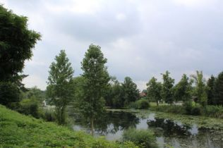 Wohngrundstück in Hohnstorf  - Hohnstorf