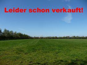 Ackerbau in Hude  - Holler-Neuenwege