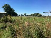 Acker,- Weidefläche in Kremmen