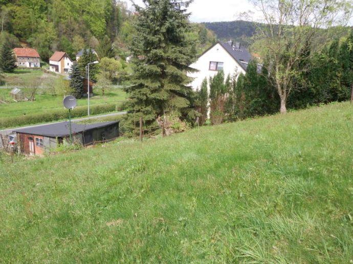 Baugrundstück auf 1000 m² in der Nähe von Bad Schandau - Hochwassersicher!