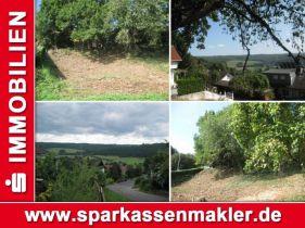 Wohngrundstück in Ortenberg  - Eckartsborn