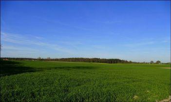 Wohngrundstück in Nidda  - Kohden