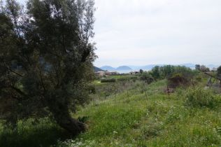 Wohngrundstück in VASILIKI