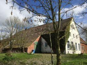 Bauernhaus in Norden  - Westermarsch II