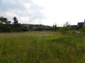 Wohngrundstück in Thomasburg  - Thomasburg