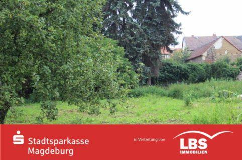 großes Grundstück in Meitzendorf