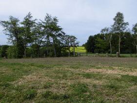 Wohngrundstück in Pronstorf  - Eilsdorf