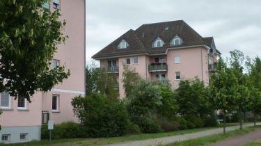 Erdgeschosswohnung in Schwedt  - Kastanienallee