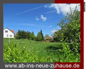 Wohngrundstück in Blomberg  - Eschenbruch