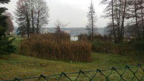 Etagenwohnung in Grünheide  - Gottesbrück