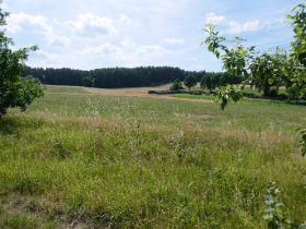 Grundstück Pleinfeld Bei Immonetde