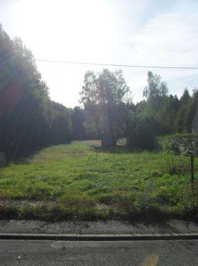 Wohngrundstück in Allenbach
