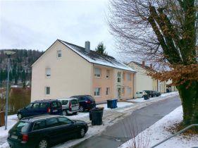 Erdgeschosswohnung in Immendingen  - Immendingen