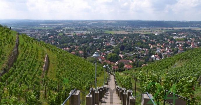 Bauträgerfreies Grundstück in gefragter Lage im Norden von Radebeul