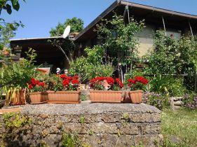 Wohngrundstück in Gradoli