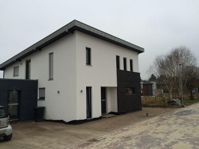 Modernes Pultdach Einfamilienhaus Mit Allen Optionen