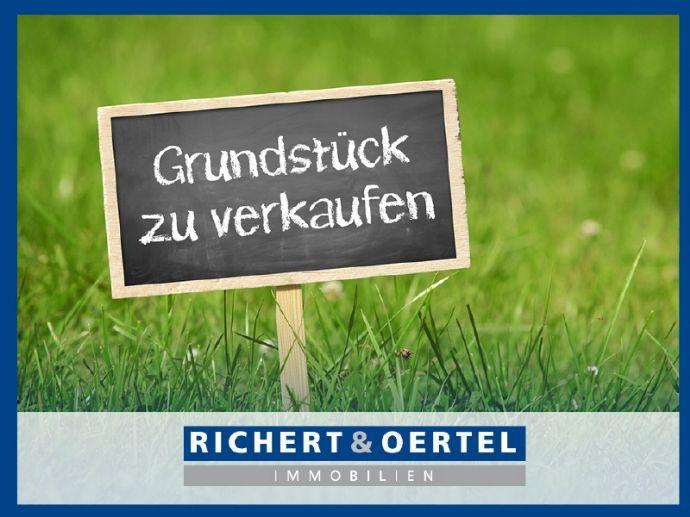www.r-o.de +++ Absolute Rarität - Baugrundstück am Elbhang