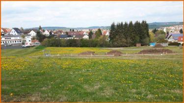 Wohngrundstück in Lauterbach  - Lauterbach