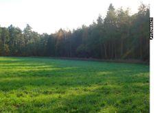 Sonstiges Grundstück in Adendorf  - Adendorf