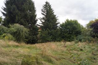 Wohngrundstück in Wennigsen  - Holtensen