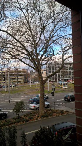Praxisfläche in Heidelberg  - Weststadt